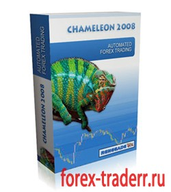Forex g force
